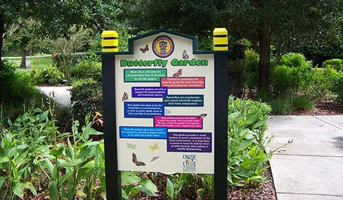 Chapin and butterfly garden 006